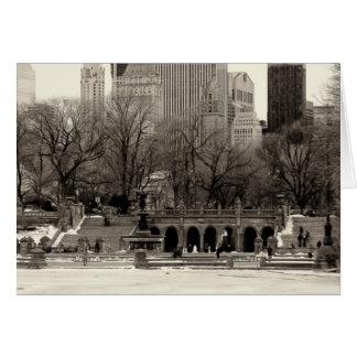 Foto de la terraza en Central Park, NYC de Bethesd Tarjeta