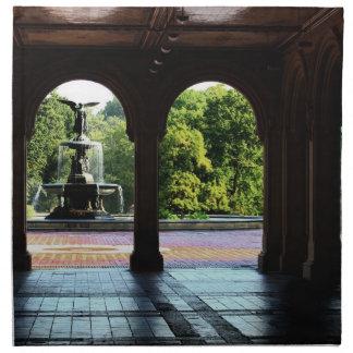 Foto de la terraza en Central Park NYC de Servilleta Imprimida