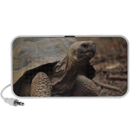 Foto de la tortuga portátil altavoz