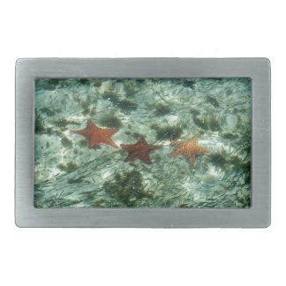 Foto de las estrellas de mar de Belice Hebilla De Cinturón Rectangular