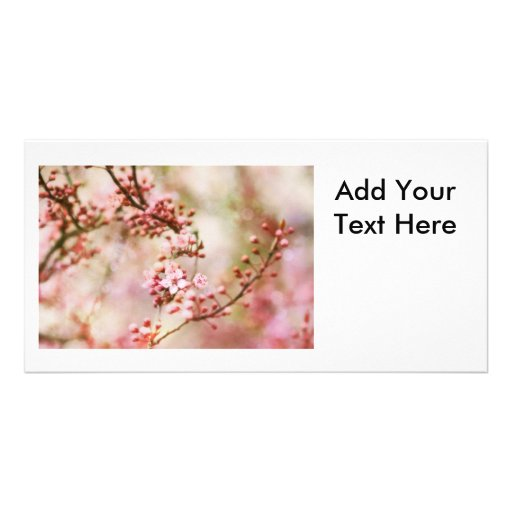 Foto de las flores de cerezo tarjeta con foto personalizada