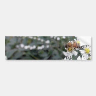 Foto de las margaritas de las flores de los Wildfl Pegatina Para Auto