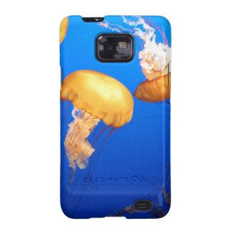 Foto de las medusas galaxy SII carcasas