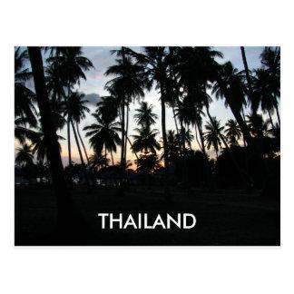 Foto de las palmeras de la puesta del sol de tarjeta postal