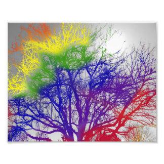 Foto de las ramas de árbol coloreadas arco iris - fotografía