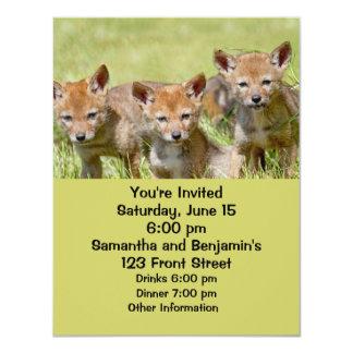 """Foto de los coyotes del bebé invitación 4.25"""" x 5.5"""""""