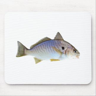 Foto de los pescados del punto tapetes de raton