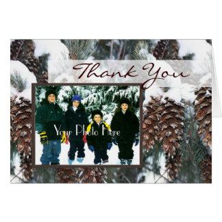 Foto de los pinos del invierno tarjeta de felicitación