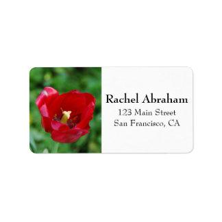 Foto de Marco de una flor roja Etiqueta De Dirección
