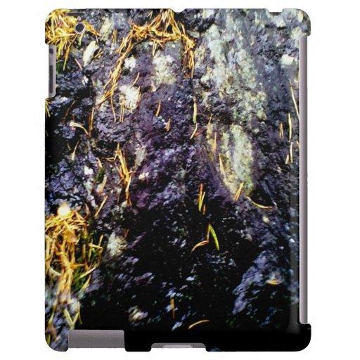 Foto de tierra funda para iPad
