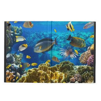 Foto de un pescado tropical en un arrecife de cora