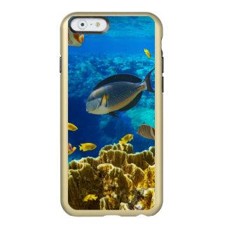 Foto de un pescado tropical en un arrecife de funda para iPhone 6 plus incipio feather shine