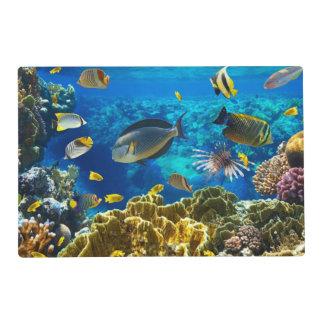 Foto de un pescado tropical en un arrecife de salvamanteles