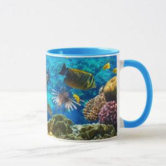 Foto de un pescado tropical en un arrecife de taza