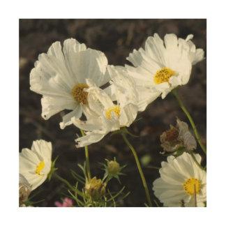 Foto de una cama de flor del blanco y de las cuadro de madera
