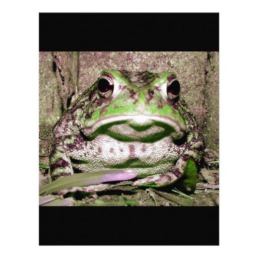 Foto de una rana gorda funnycolorful del sapo plantillas de membrete