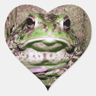 Foto de una rana gorda funnycolorful del sapo pegatina en forma de corazón