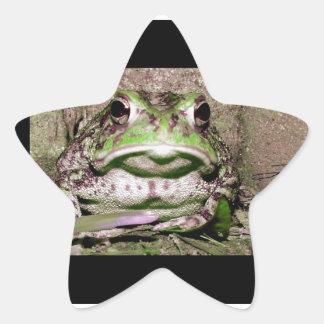 Foto de una rana gorda funnycolorful del sapo pegatina en forma de estrella