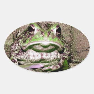 Foto de una rana gorda funnycolorful del sapo pegatina ovalada