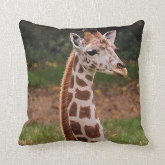 Foto del animal de la fauna de la jirafa cojín