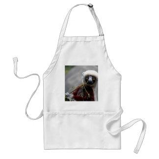 Foto del animal de la fauna del Lemur de Sefaka Delantal