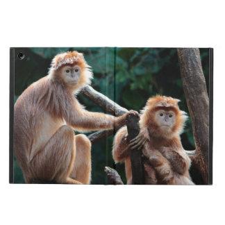 Foto del animal de la fauna del mono del Langur