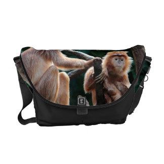 Foto del animal de la fauna del mono del Langur Bolsa De Mensajería