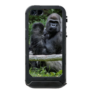 Foto del animal de la fauna del primate del mono carcasa de iphone 5 incipio atlas id