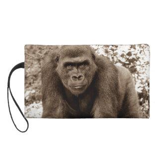 Foto del animal de la fauna del primate del mono d