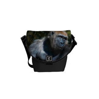 Foto del animal de la fauna del primate del mono d bolsa de mensajeria