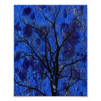 Foto del árbol oscuro con nieve en fondo azul cojinete