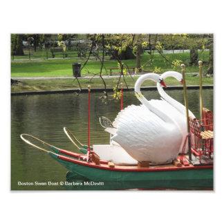 Foto del barco del cisne de Boston Cojinete