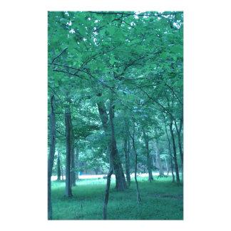 Foto del bosque  papeleria