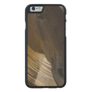 Foto del caballo del mustango funda de iPhone 6 carved® slim de arce