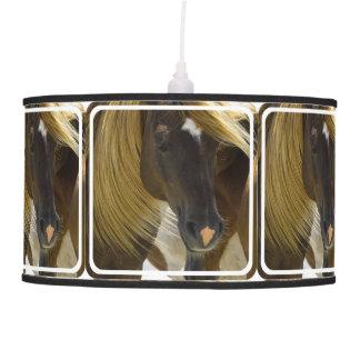 Foto del caballo del mustango