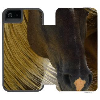Foto del caballo del mustango funda cartera para iPhone 5 watson