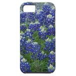 Foto del campo de los Bluebonnets de Tejas iPhone 5 Carcasas