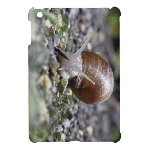 Foto del caracol iPad mini cárcasa