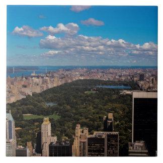 Foto del Central Park en New York City Azulejo Ceramica