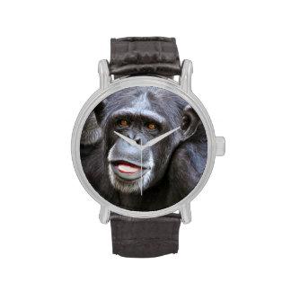 Foto del chimpancé relojes