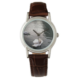 foto del cisne en agua reloj de mano