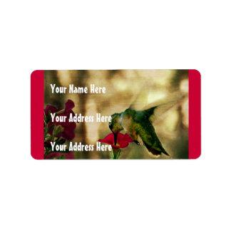 Foto del colibrí etiqueta de dirección
