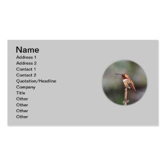 Foto del colibrí plantilla de tarjeta de visita
