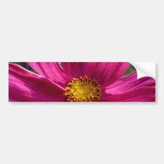 Foto del cosmos de las rosas fuertes etiqueta de parachoque