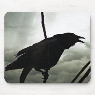 Foto del cuervo/del cuervo tapetes de ratón