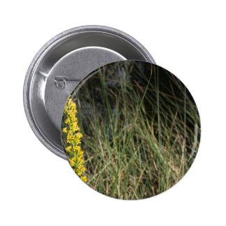 Foto del diseño del fondo de la hierba verde de Br Pins
