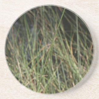 Foto del diseño del fondo de la hierba verde de Br Posavasos Manualidades
