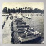 Foto del embarcadero de la gaviota del campo del v poster
