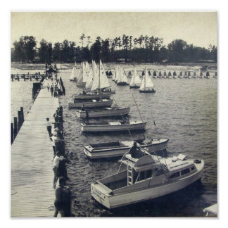 Foto del embarcadero de la gaviota del campo del v póster