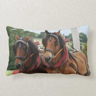 Foto del equipo del caballo de proyecto de la cojines